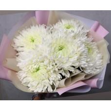 "Bouquet ""Antonov"""