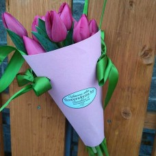 11 pink tulips in conus