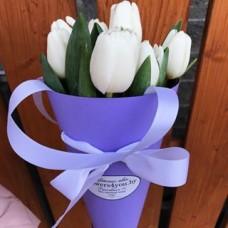 11white  tulips in conus