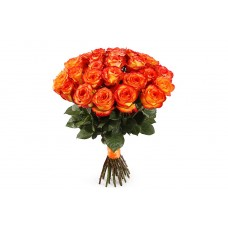 31 Rose High Magic