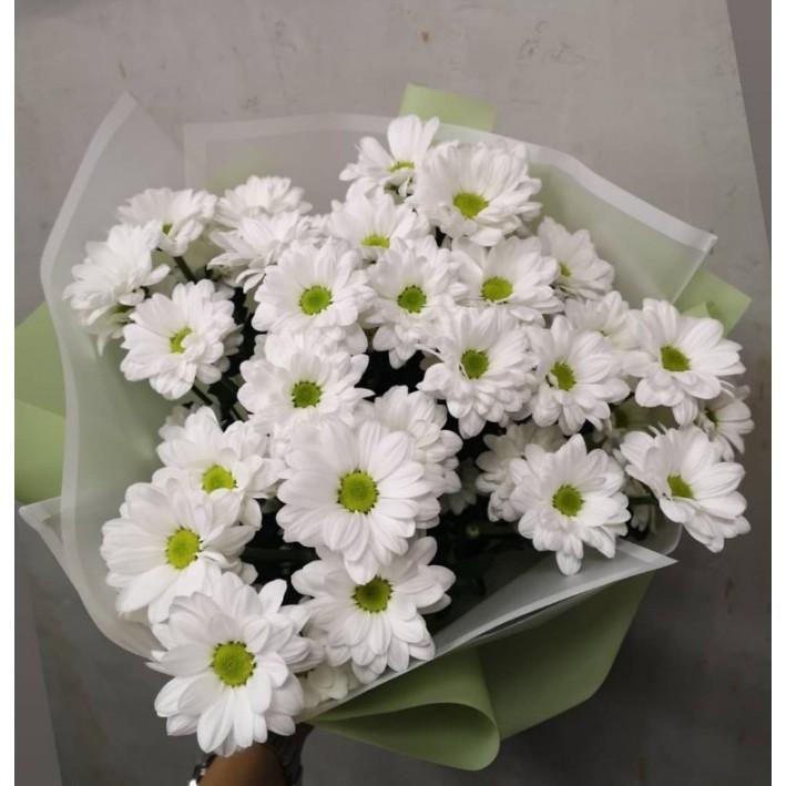 5 white chrysanthemums