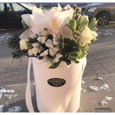"box ""White cymbidium"""