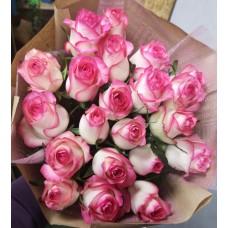 21 rose Jumilia varieties per pack