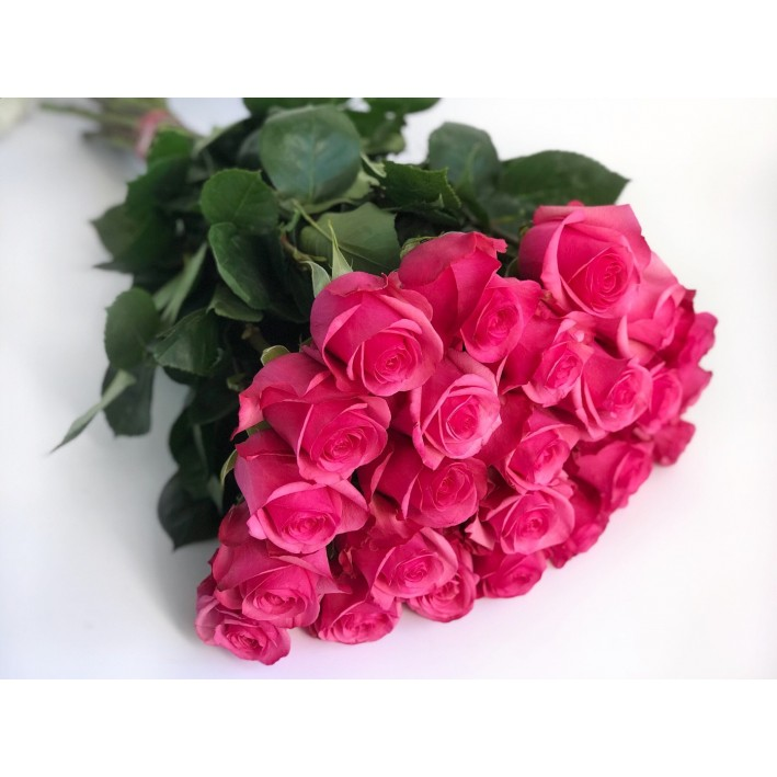 21 rose Pink Floyd