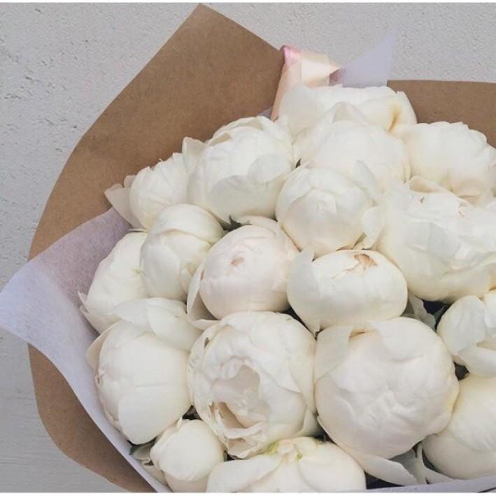 25 white peonies