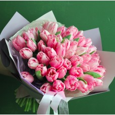 36 pink peony tulips