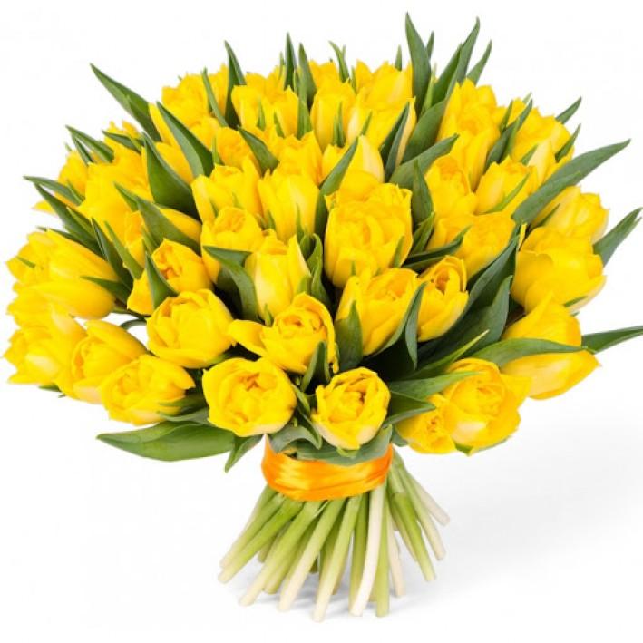 45 yellow tulips