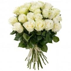 21 rose Mondial