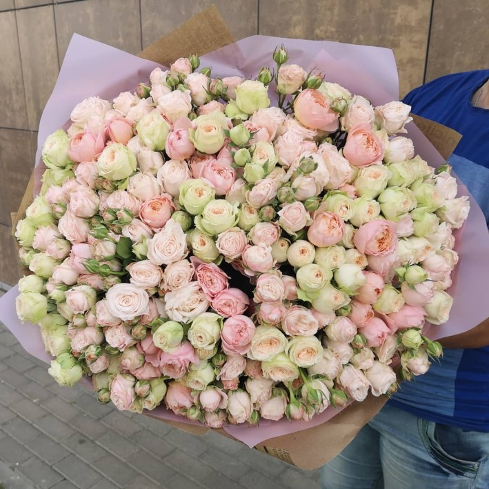 51 pion shaped spray roses
