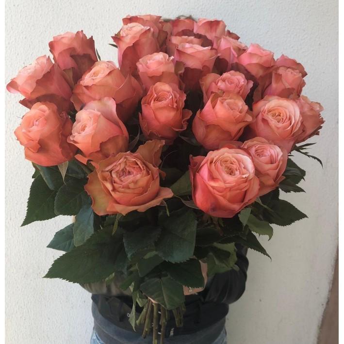 35 peony roses Kahala