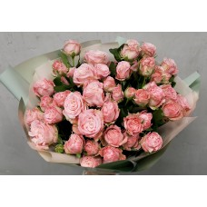 11 pion-shaped bush roses bombastik
