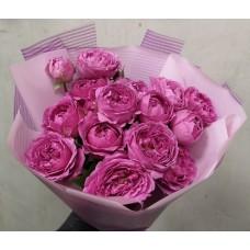 5 peony bush roses (Misty Bubbles)