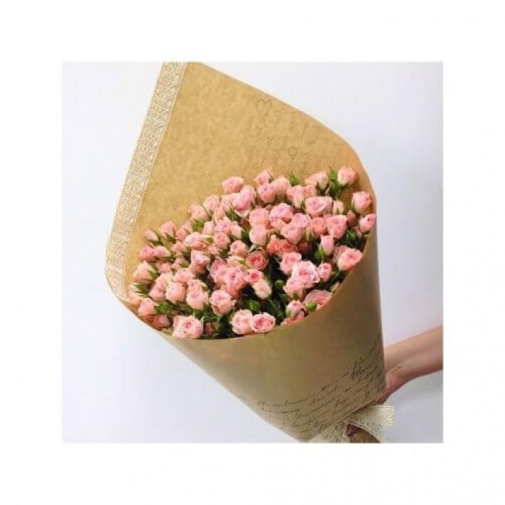 11 pink shrub roses