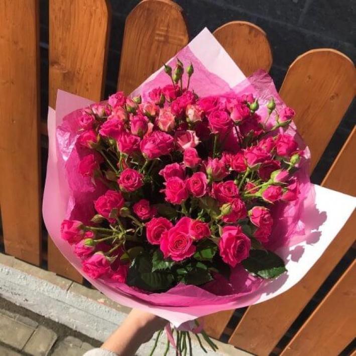 15 pink shrub roses