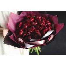 25 burgundy peonies