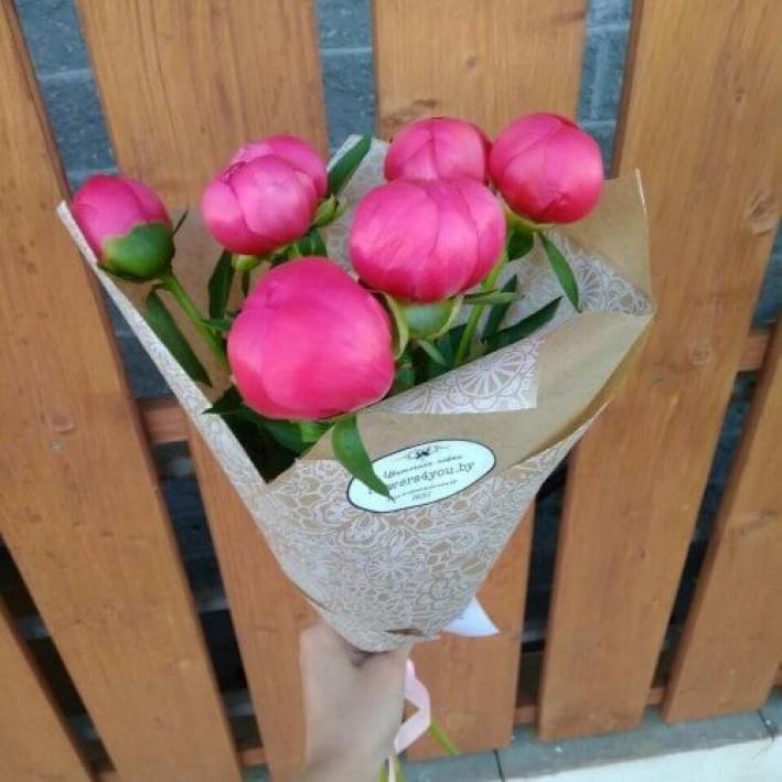 7 pink peonies