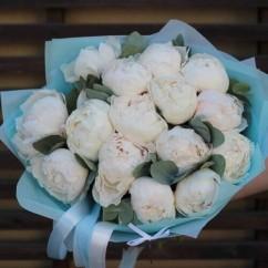 15 white peonies