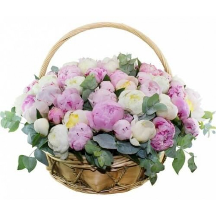 Basket of 27 peonies