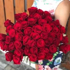 51 red rose