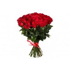 31 rose Freedom