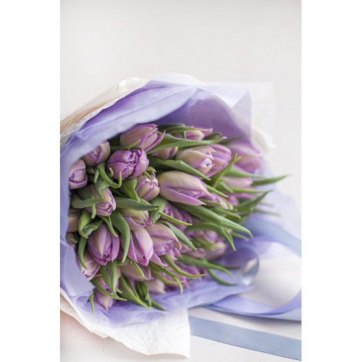 25 purple tulips